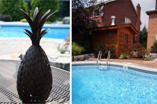 Metal Pineapple - Pool View
